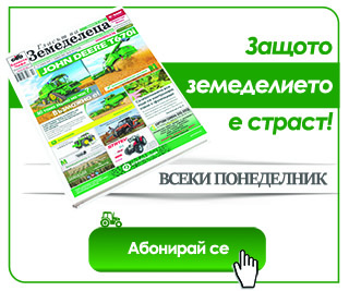 Web banner subscribe1